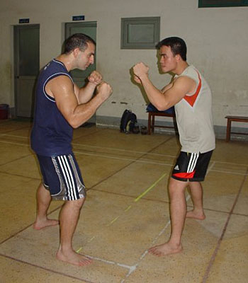 Antonio Graceffo - VoVinam - Traditional Vietnamese Martial Art