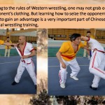 Martial Arts Styles Do Exist